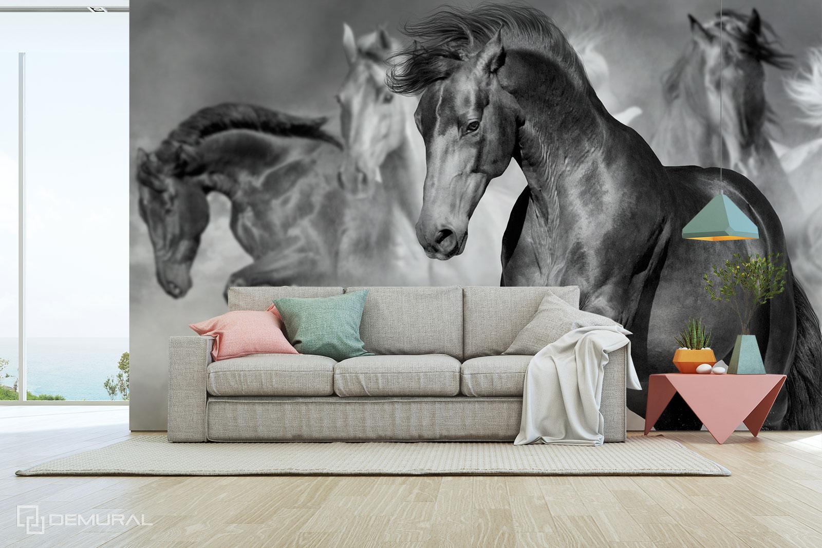 Fototapeta Monochromatyczne konie - Fototapety z końmi - Demural