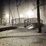 Park bridge in winter