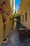 Restaurant in shade at street of old city and harbor, Crete