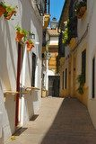 Traditional Cordoba Street, Andalusia, Spain