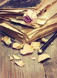 Dry rose and old books