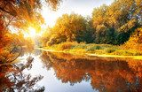 River in a delightful autumn forest