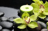 Green orchid and candle on black stones