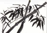 chinese painting bamboo horizontal version