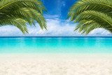 coco palms  tropical paradise beach background with turquoise blue water and blue sky / Paradies Traumstrand Hintergrund mit Palmen und blauem Himmel