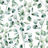 Watercolor silver dollar eucalyptus seamless pattern. Hand painted eucalyptus branch and leaves isolated on white background. Floral illustration for design, print, fabric or background.