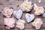 Decorative hearts  and  pink peonies flowers on aged wooden back
