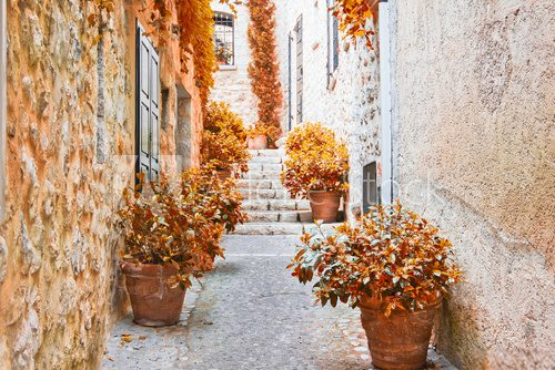 Street in Provence during the fall